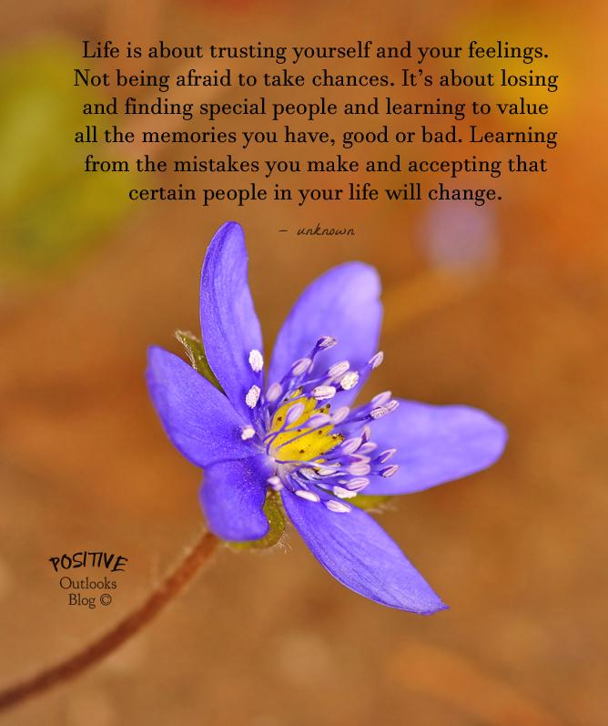 Blue wildflower blooming on spring meadow