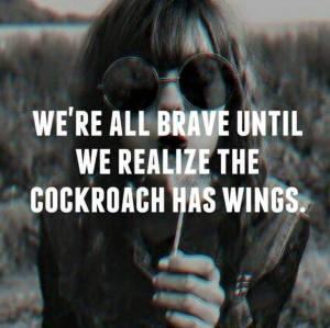 brave cockroach