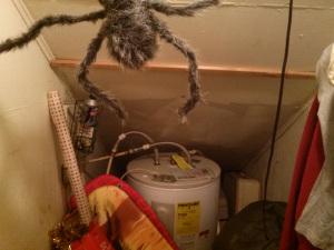closet_2_spider