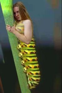 caterpillar girl