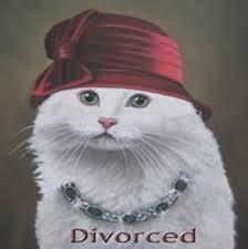 divorced cat