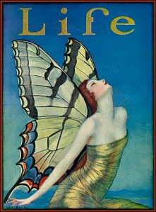 life butterfly Benda