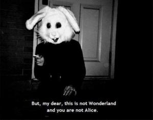 my dear not  Alice